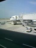 暑い東京に戻る