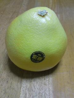 新しく美味しい柑橘類「メロゴールド」