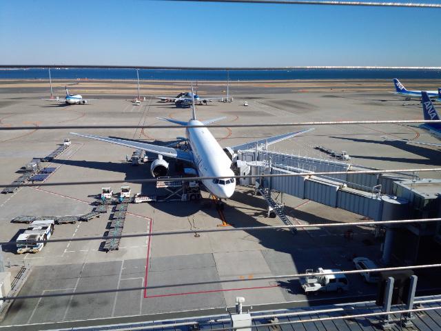 羽田空港第2ターミナル屋上を初見学した